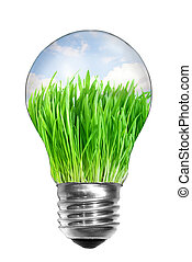Natural energy concept. Light bulb with summer meadow inside isolated on white