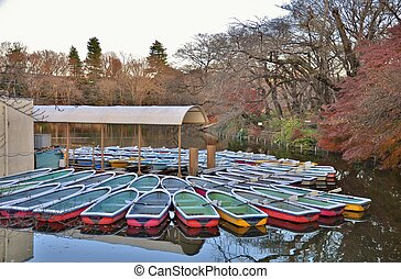 boats on the pond - Many boats on the pond in Inokashira...