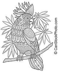 Cockatoo parrot coloring book for adults vector...