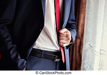 Businessman wears a jacket.Politician, man's style,male...