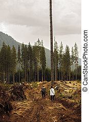 Woman tourist witnessing a desolated landscape of forests...