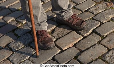 Legs with cane on path