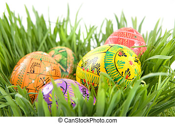 color easter eggs in nest from green grass on white