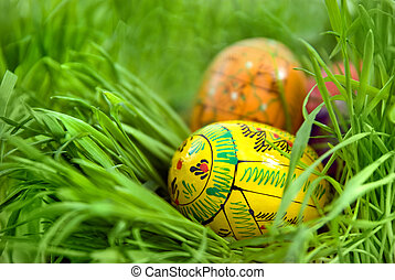 color easter eggs in nest from green grass