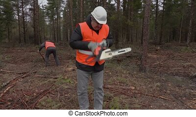 Lumberjacks working in forest