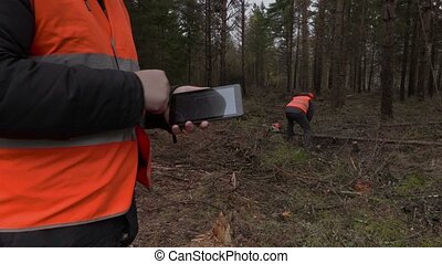 Lumberjack using tablet in forest