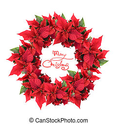 christmas wreath from poinsettia