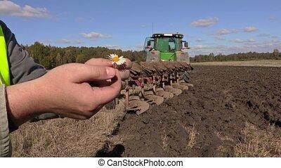 Farmer pulling petals from flower