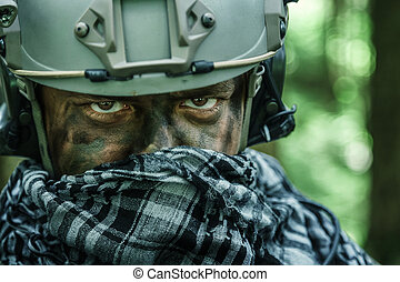 army ranger in the forest - United states army ranger in the...