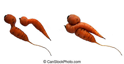 Yin and yang carrots - Pair of carrots with a unique shape...