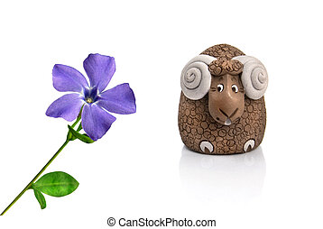 funny lamb looking at violet spring flower