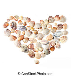 heart for valentine's day from color shells isolated on white