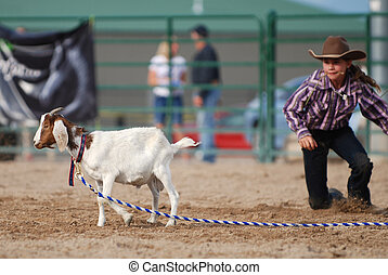 Little Cowgirl - Young cowgirl approaching a goat in a rodeo...
