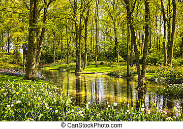 Garden in Keukenhof, tulip flowers, pond and trees. Netherlands