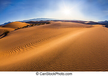 Hot and windy morning in the desert - Gentle ripples on sand...