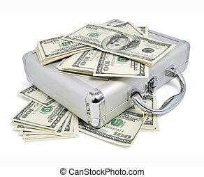 Paquetes, dólares, dinero, plata, maleta