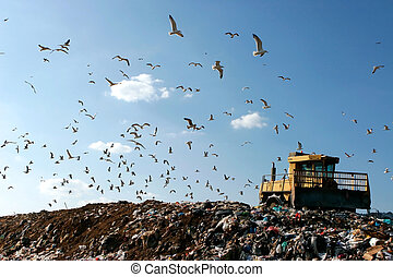 Landfill Working - Landfill with bulldozer working, against...
