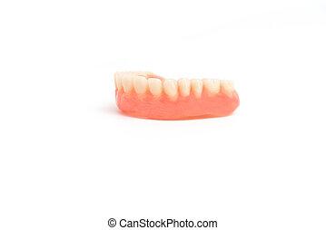 upper dentures on white background
