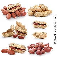 collection of dried peanut fruits isolated on white...