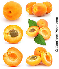 collection of fresh apricot fruits isolated on white...