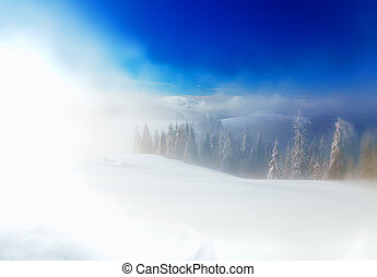 Beautiful mountain snowy landscape and snow covered trees....