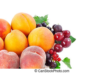 fruits and berries on a white background