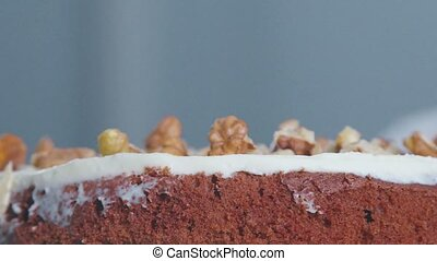 Close-up of two layers of cake. Side view: the layers of...