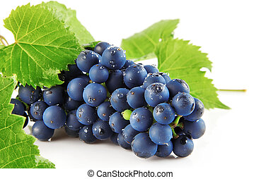 azul, uva, verde, folhas, isolado, fruta