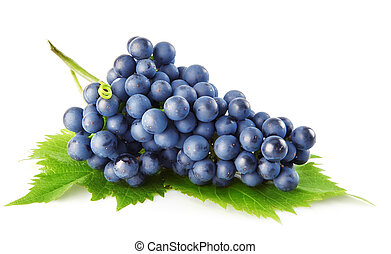 bleu, raisin, vert, feuilles, isolé, fruit
