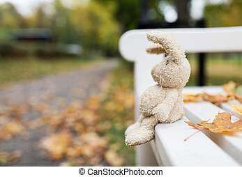 toy rabbit on bench in autumn park