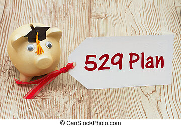 Your 529 education savings plan, A golden piggy bank and...