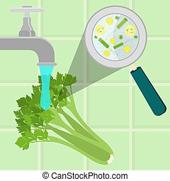 Washing contaminated celery - Contaminated celery being...