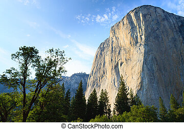 El Capitan rock from Yosemite National Park, California USA....