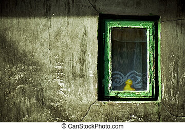 Abstract grunge image: duck-toy looking from window unhappy...