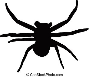 a Spider silhouette