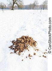 Sandy molehill in winter snow - Brown sandy molehill in...