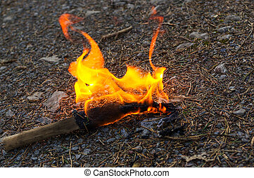 torch flame in wild nature background. - a torch and flame...