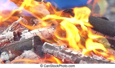 Stunning red tongues of fire flame burn wood sticks in...