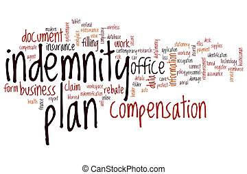 Indemnity plan word cloud concept