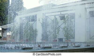 Fountain in the garden - Beautiful dancing fountain on the...
