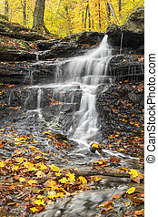 Falling Water, Falling Leaves - Colorful autumn leaves...