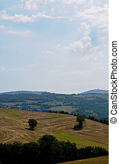 hills in the beautiful Marche countryside near...
