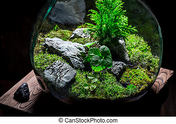 Amazing jar with piece of forest, save the earth idea