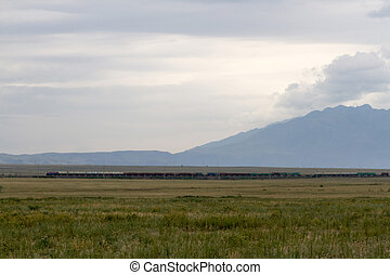 Freight train with steppe - freight train in the steppes of...