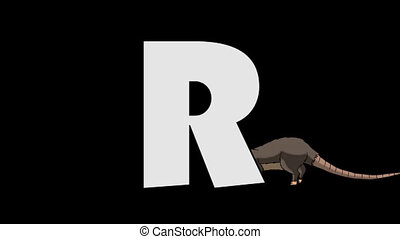 Letter R and Rat (background) - Animated animal English...