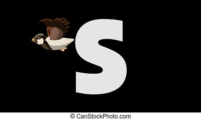 Letter S and Sparrow (background) - Animated animal English...