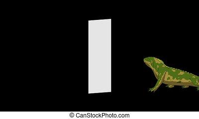 Letter I and Iguana (background) - Animated animal English...