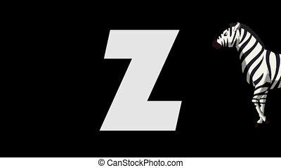 Letter Z and Zebra (background) - Animated animal English...