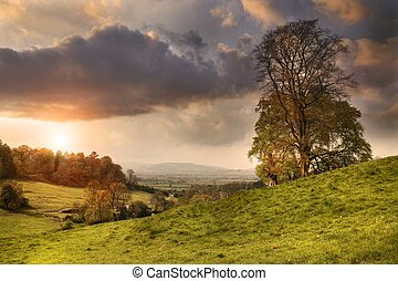 Cotswold landscape at sunset - View from Lidcombe Hill near...