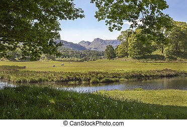 Elterwater looking towards the Langdale Pikes, The Lake...